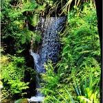 Madagaskar Masoala Wasserfall Regenwald