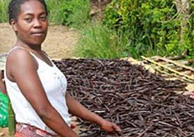 Madagaskar Vanille Frau Norden Dorf