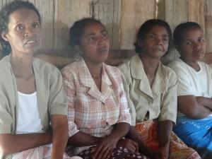 Arbeitseinsätze in Madagaskar: Ankaramalaza-Projekt