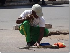 Schlangenbeschwörer in Antananarivo, Madagaskar.