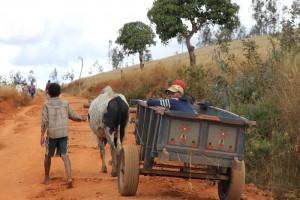 Madagaskar-Hochland-Andringitra