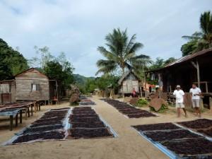 Madagaskar-SAVA-Vanilledorf