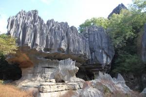 Drei auf einen Streich in Madagaskar_Tsingy