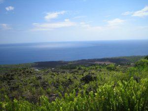 Karthala-Trekking - Teil 3: Aufstieg zur Caldera und Aussicht auf den Ozean