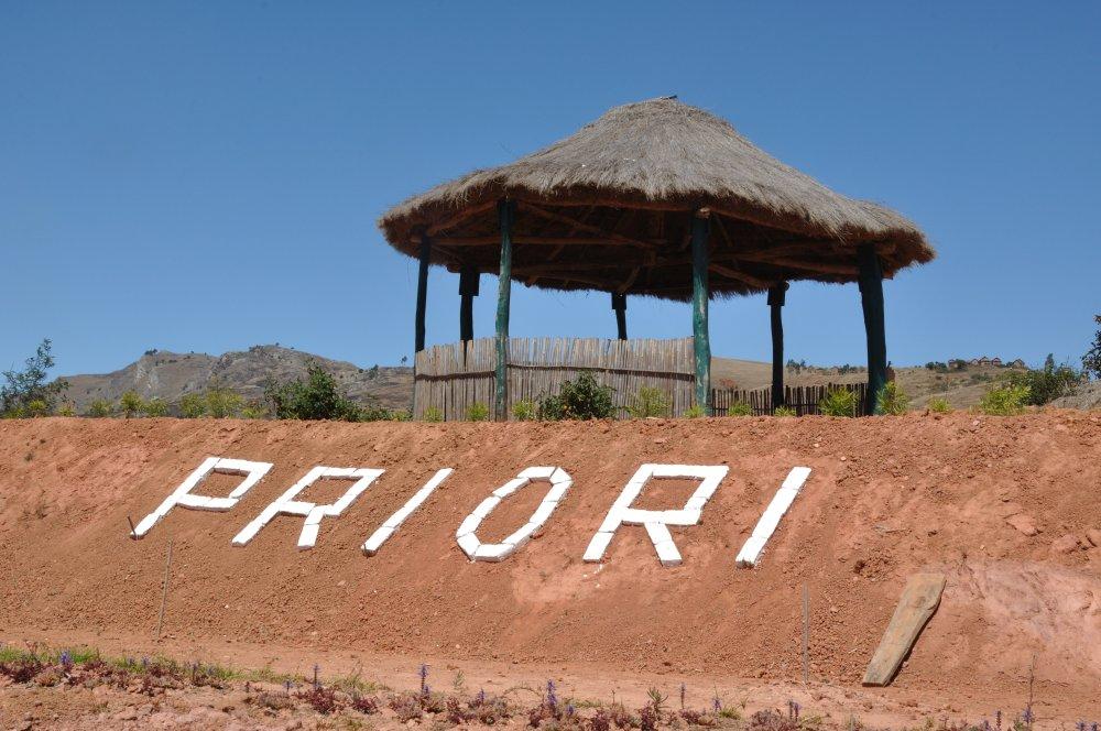 Madagaskarreise mit PRIORI: Unsere Erwartungen bei Weitem übertroffen: PRIORI Sanft landen 5 Bäume pro Flug
