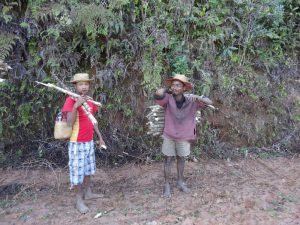 Trekking zum Sakaleona Madagaskar