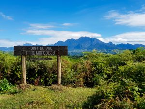 Trekking im Marojejy Nationalpark: Blick auf Marojejy-Massif