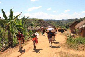 Exklusives Ostküstentrekking in Madagaskar