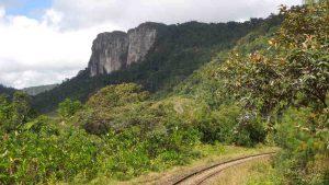 Bahnwanderung entlang der Dschungelbahn - Ausblick