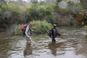 Trekking zum Sakaleona Wasserfall: Wasserläufe und Sümpfe