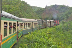 Dschungelexpress Reise in den Südwesten Madagaskars
