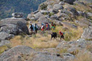Unvergessliche Madagaskarreise: Wanderung im Gebirge des Andringitra Nationalparks in Madagaskar
