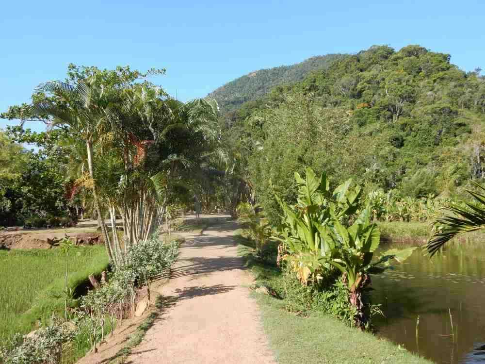 Zufahrtsstrasse im Andohahela Nationalpark