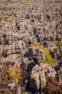Tsingylandschaft im Ankarana Spezialreservat in Madagaskar
