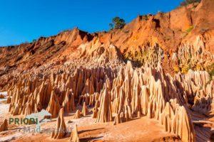 Tsingy Rouge im Spezialreservat Analamerana im Norden von Madagaskar