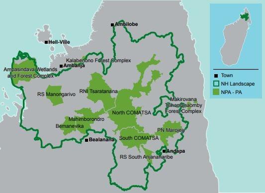 Naturreservat Mahimborondro © WWF